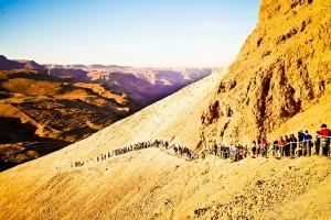 программа маса тропа израиль